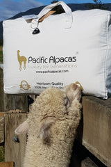 Regular alpaca duvet - made in New Zealand