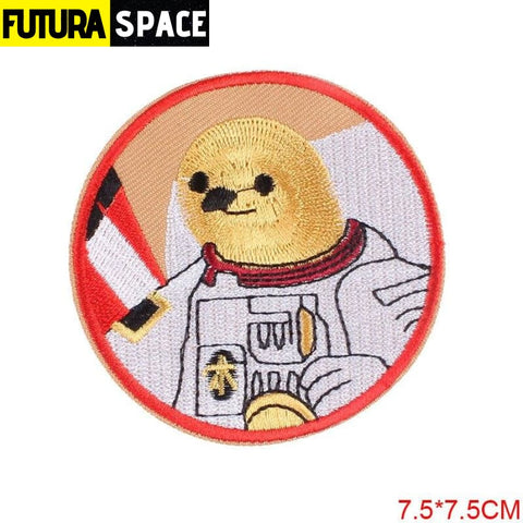 SPACE PATCH - Astronaut Air Force - PE1122CT - 100005735