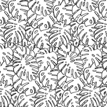Load image into Gallery viewer, B&W MONSTERA LEAVES GIFT WRAP ROLL