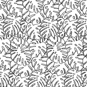 B&W MONSTERA LEAVES GIFT WRAP ROLL