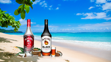 Malibu Black & Malibu Red have arrived!
