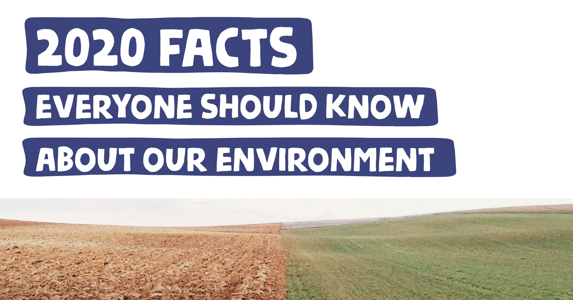 Environment Facts