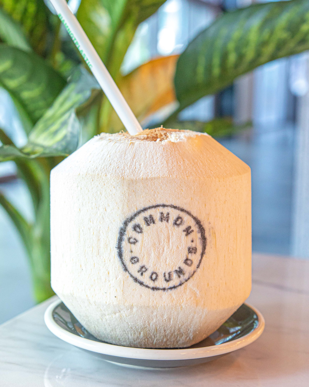 Whole Drinking Coconut