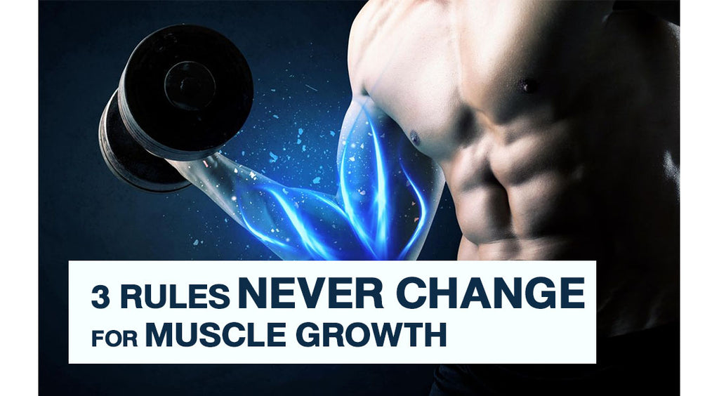 3 Rules Which Will Never Change For Muscle Growth