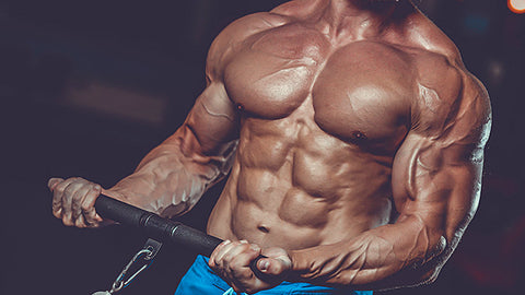 Many bodybuilders use muscle-building supplements for their fitness goals - Ultimate Sup