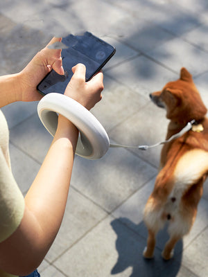 Smart Retractable Dog Leash