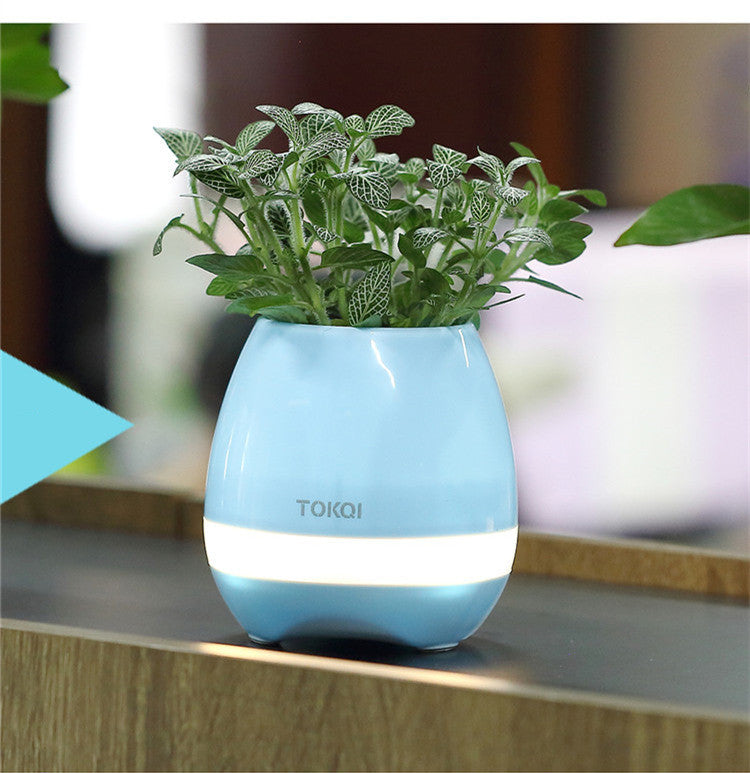 Smart Music Flower Pot -  Best Finds Now