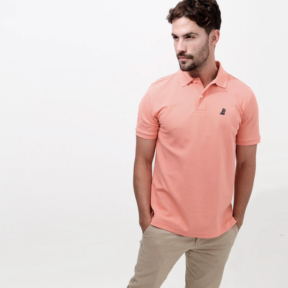 Men's Coral Regular Fit Polo Shirt