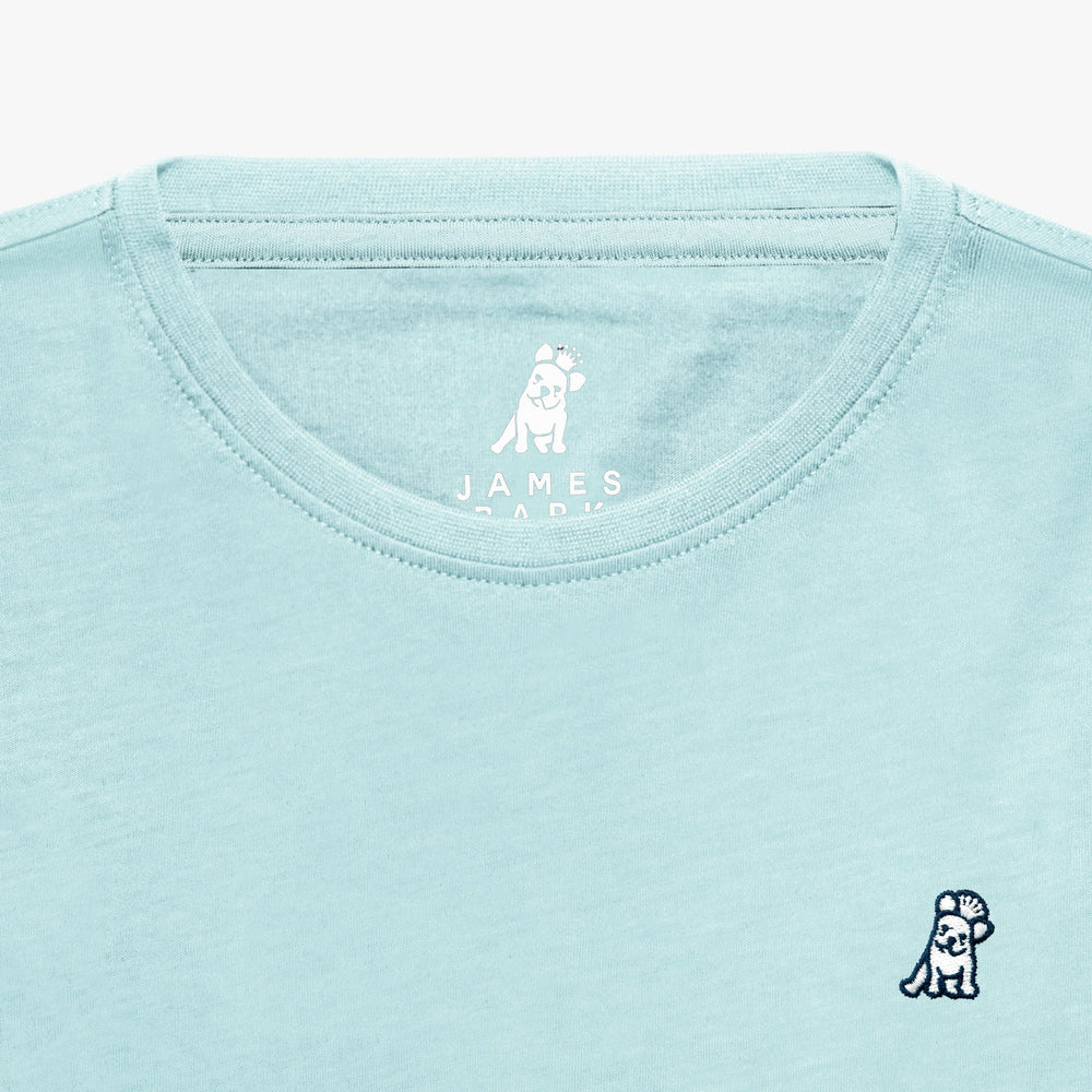 Men's Light Blue Pima Cotton Jersey T-shirt