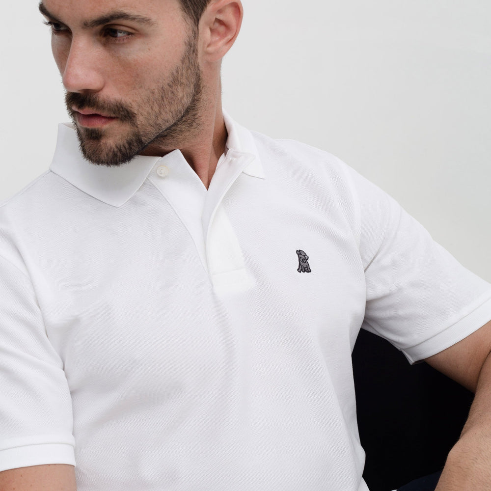 Men's White Regular Fit Polo Shirt