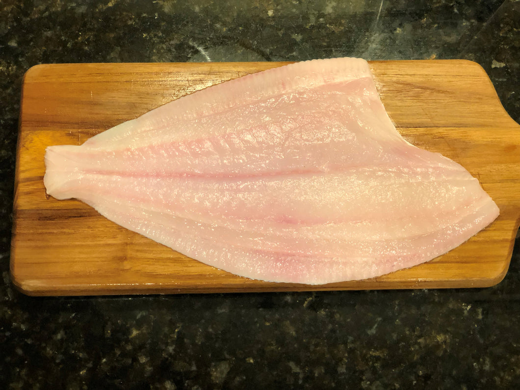 Flounder Fillets | 10 lb. Box