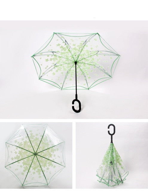 C-Umbrella (Transparent Green)