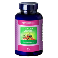 Wellness Multivitamin/Mineral 2-A-Day - 60 Tablet