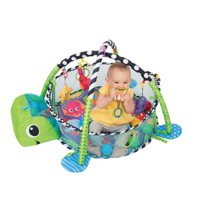 Activity Gym and Ball Pit