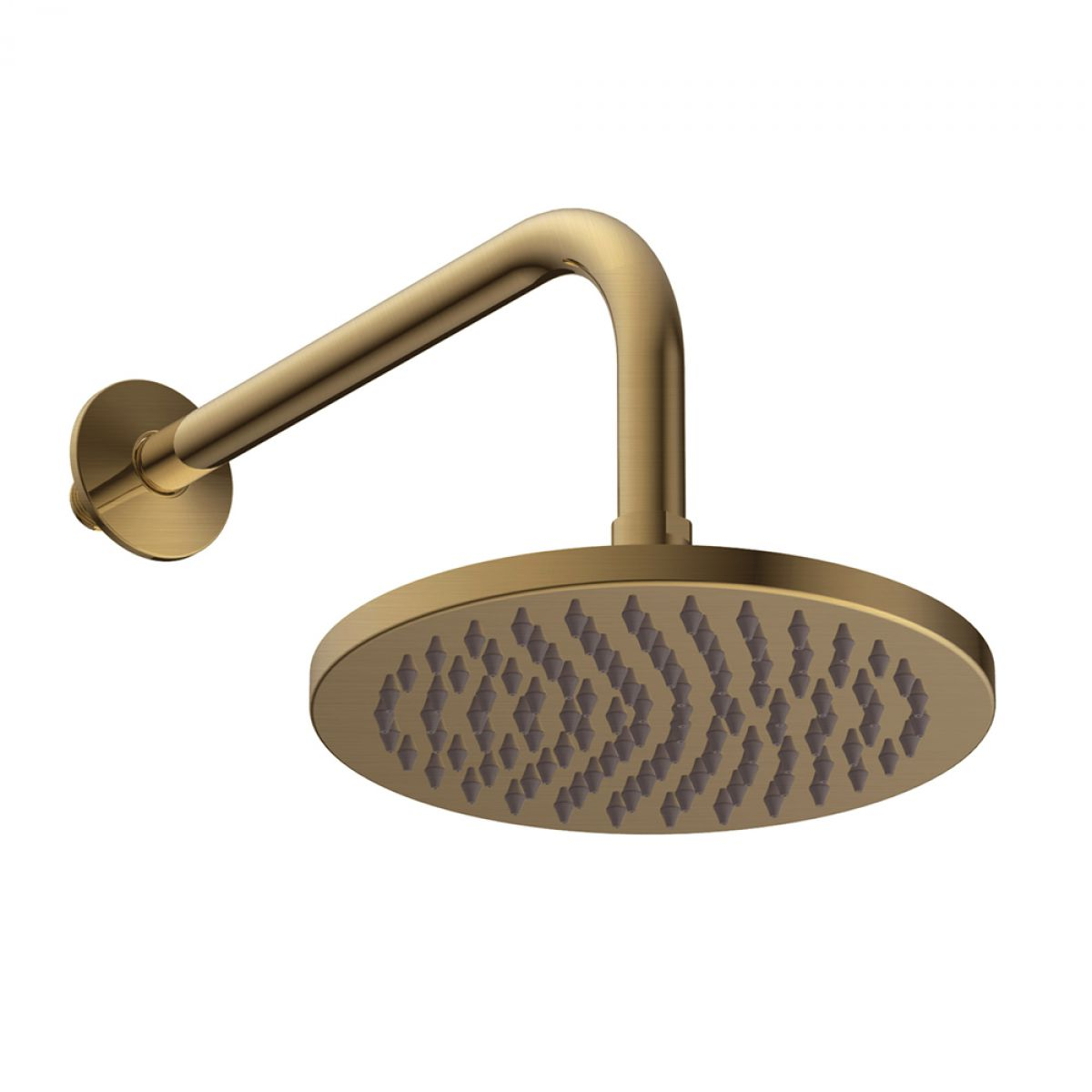 Britton Hoxton Shower Head with Wall Mounted Arm
