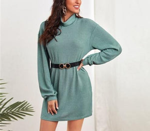 Turtle-Neck Solid Rib-Knit Dress Without Belt - LEPITON
