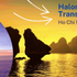 Halong Bay Transportation Guide: Ho Chi Minh to Halong Bay