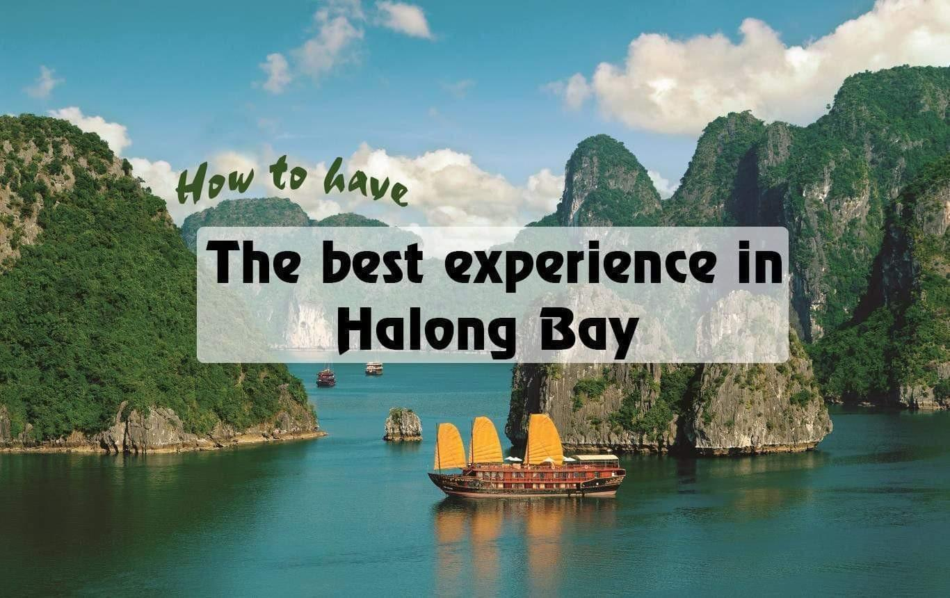 Tourist should know about the best experience in Ha Long Bay