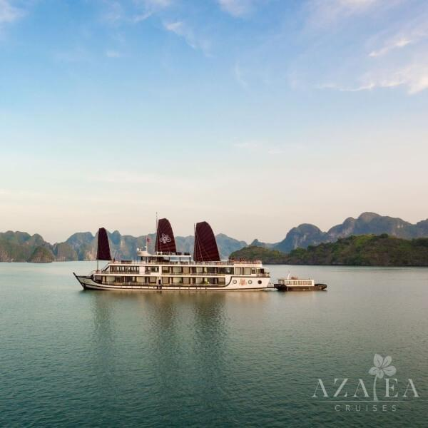 [Lowest Price] Azalea Cruise - Deluxe Cruise with Balcony - 3D2N - HalongDayTour