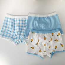 Load image into Gallery viewer, Kids Boxer Briefs (3-Pack) - Boy or Girl