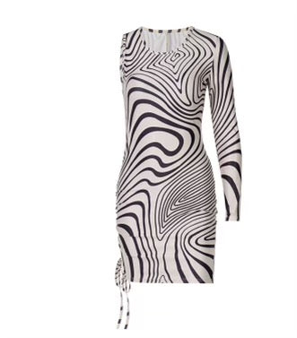 Zesty Zebra Dress