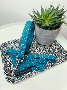 TEMPTING TEAL | BOW TIE
