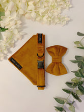 Load image into Gallery viewer, PUMPKIN SPICED VELVET LUXE | BOW TIE