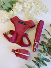 Load image into Gallery viewer, FUSIA PINK VELVET LUXE | WALKIES SET