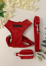 Load image into Gallery viewer, ROBYN RED VELVET LUXE | WALKIES SET