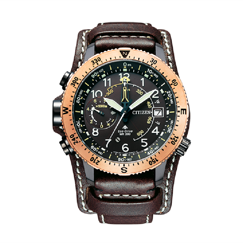 Citizen Promaster BN4055-35W Eco-drive Water resistant to 20 bar Watch - IPPO JAPAN WATCH