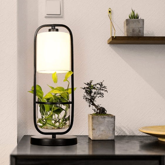 Augustus - Frame Planter LED Desk Lamp - Atcreative