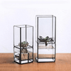 Barnabas - Modern Hydroponic Succulent Frame Planter - Atcreative