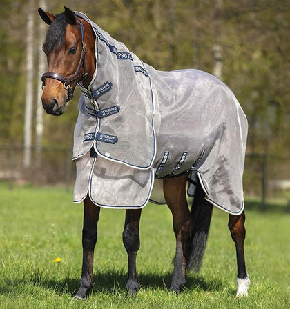 Summer Horse Clothing