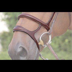 Dy'on Double Noseband w/ Brass Fittings - Vision Saddlery