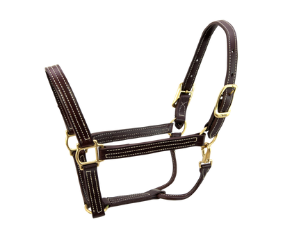 Walsh British Halter - Vision Saddlery