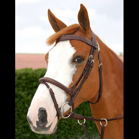 Dy'on Working Collection Fancy Flash Bridle - Vision Saddlery