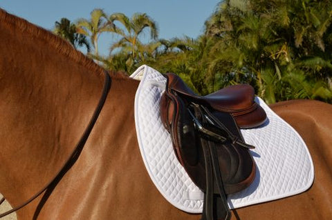 EquiFit Essential Square Pad - Vision Saddlery