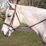 Pro-Trainer Fancy Stitched Raised Bridle - Vision Saddlery