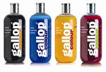 Gallop Colour Enhancing Shampoo - Vision Saddlery