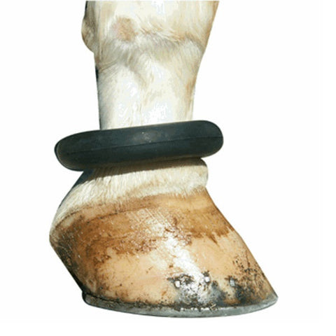 Fetlock Ring - Vision Saddlery
