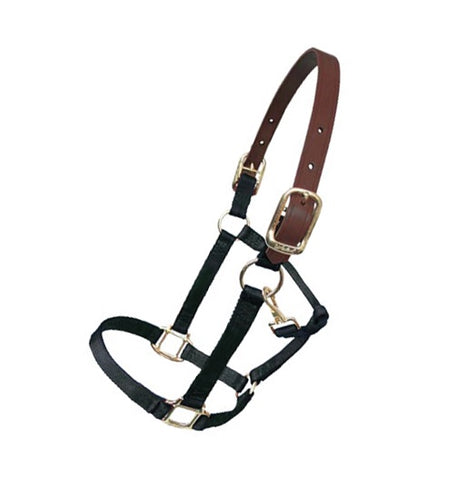 Nylon Breakaway Halter - Vision Saddlery