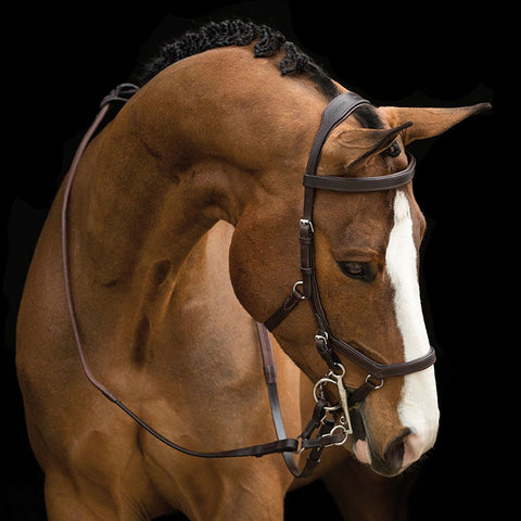 Rambo Micklem Competition Bridle w/ Reins - Vision Saddlery