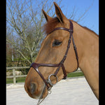 Dy'on X-Fit Anatomic Bridle - Vision Saddlery