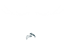 Hunting and Outdoors