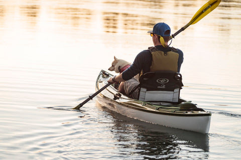 Eddyline Kayak perfect for Pets