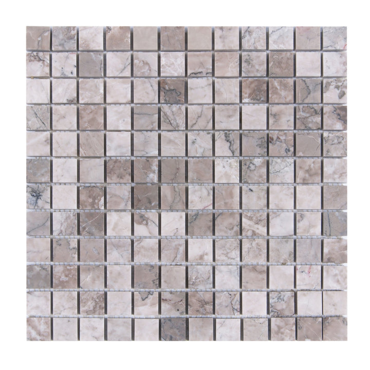 Gray Cloud 1x1 Polished Marble Mosaic