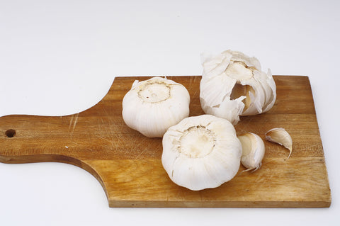 Well Life Bone Broth For Dogs and Their Humans with garlic and shiitake mushrooms