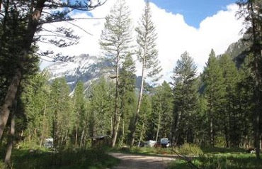 Pine Creek Campground in Montana