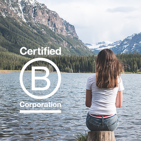Jelt Certified B Corporation image of women sitting on stump looking out on Hyalite Lake and Mountains