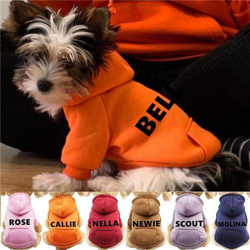 Personalized Dog Cool Hoodie